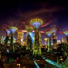 DU LICH SINGAPORE: GARDEN BY THE BAY